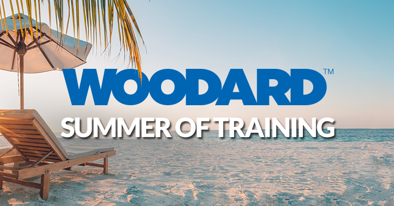 A beach scene with a palm tree, a beach chair, and an umbrella with the ocean in the background. Text reads summer of training in thick, white font